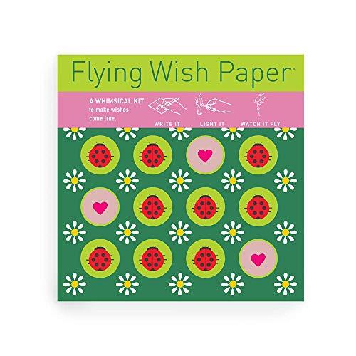 Flying Ladybug - Flying Wish Paper Ladybug Licensed Original Artwork, Mini Wishing Kit, 5