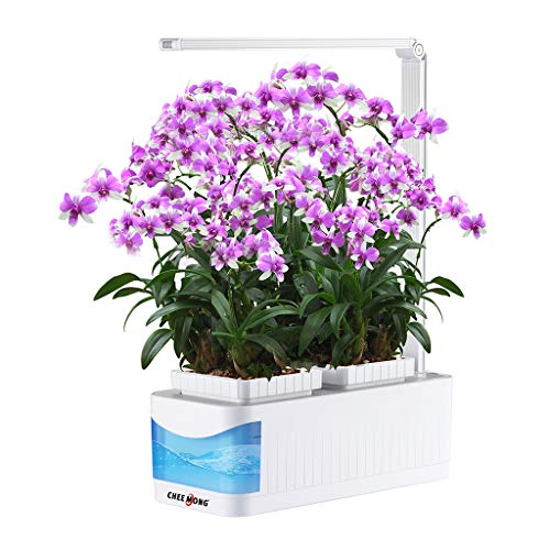 Countertop Hydroponic Growing System Kit with LED Grow Light, Herb Gardening Pots, Smart Low Water Alarm Herb Garden for Tomato Thyme Lettuce - 360° Adjustable Desk Reading Lamp (Seeds Not Included) by CHEE MONG
