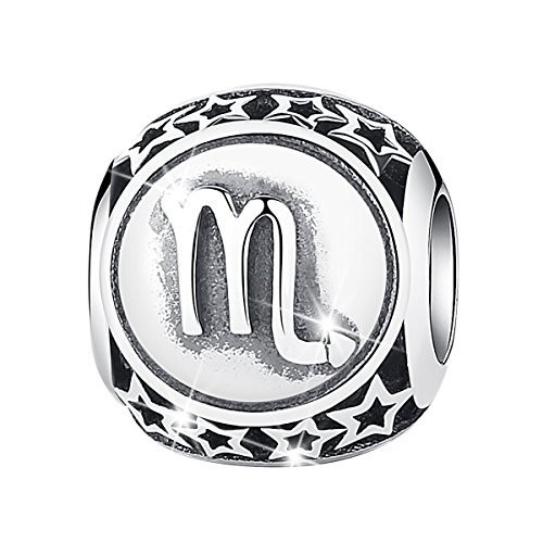 Sterling Silver Zodiac Charms (Bamoer Sign of Zodiac Scorpio 925 Sterling Silver Charms Bead For Bracelet)
