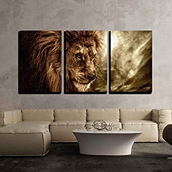 wall26 - 3 Piece Canvas Wall Art - Lion Against Stormy Sky - Modern Home Decor & Amazon.com: wall26 - 3 Piece Canvas Wall Art - Lion Against Stormy ...