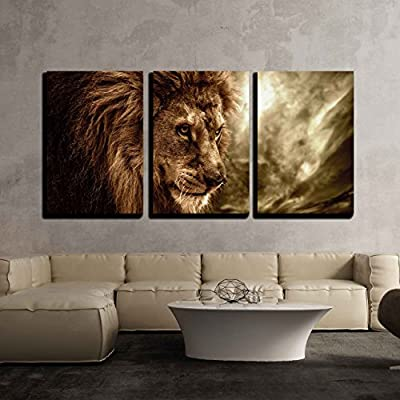 Lion Against Gloomy Sky - 3 Panel Canvas Art