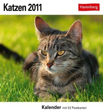 Katzen 2011. Postkartenkalender: 53 Postkarten