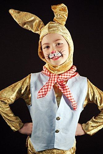World Book Day-Beatrix Potter-Peter Rabbit Dressing up set-Woodland Animal-Children's Fancy Dress Costume (AGE ()