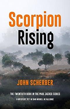 Scorpion Rising (Murder in Mexico Book 20)