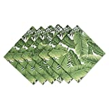 DII 100% Cotton, Machine Washable, Oversized Basic Everyday 20x20'' Napkin Set of 6, Banana Leaf