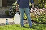 Roundup For Lawns2 Concentrate (Northern) - 32 oz., Lawn Safe Weed Killer For Northern Lawns, Kills Crabgrass, Dandelion, Clover & Yellow Nutsedge, Starts Working Immediately
