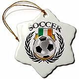3dRose Republic of Ireland Soccer Ball Snowflake Ornament, 3''