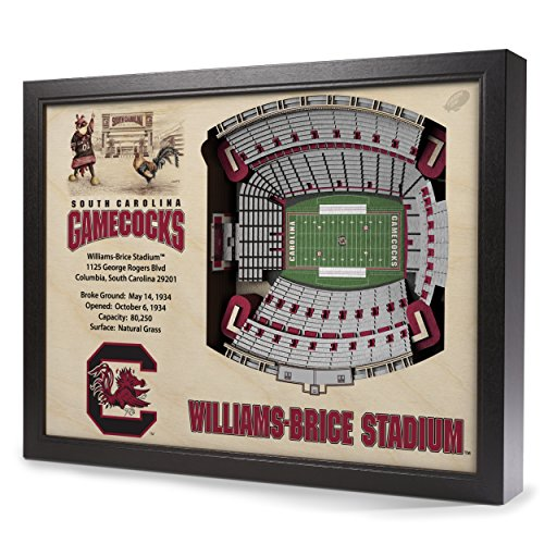 NCAA South Carolina Fighting Gamecocks 25-Layer StadiumView 3D Wall Art by Sportula