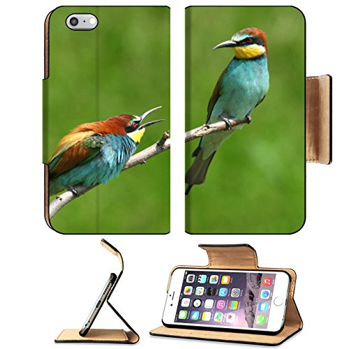 MSD Premium Apple iPhone 6 Plus iPhone 6S Plus Flip Pu Leather Wallet Case IMAGE ID 30648394 A pair of European bee eater perched on a twig quarrel