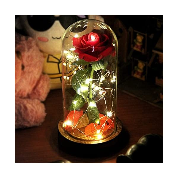 Beauty and The Beast Rose, Red Silk Rose That Lasts Forever in a Glass Dome with LED Lights,Gift for Valentine's Day Wedding Anniversary Birthday (TypeB)