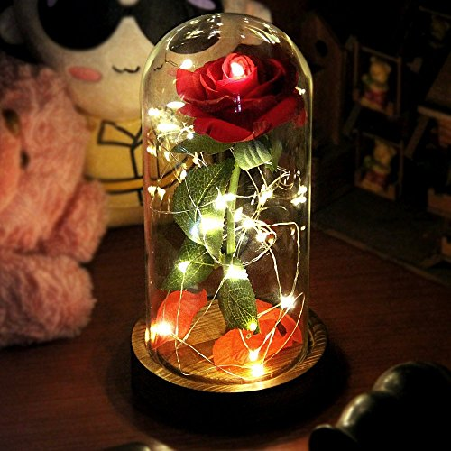 Beauty and The Beast Rose, Red Silk Rose That Lasts Forever in a Glass Dome with LED Lights,Gift for Valentines Day Wedding Anniversary Birthday (TypeB)
