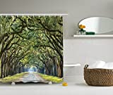 Ambesonne Forest Shower Curtain Green Woodland Country Decor by, Tree Branches and Leaves on an Impressionist Road Scene Landscape Primitive, Polyester Fabric Bathroom Shower Curtain Set with Hooks