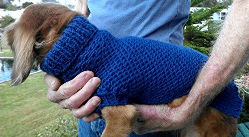 Lenas Easy Ripple Stitch Miniature Dachshund Sweater Fits
