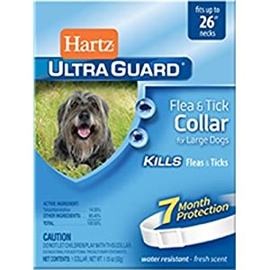 "2 Packs, 26"", White Flea & Tick Large Dog Collar Pack of 2 31"