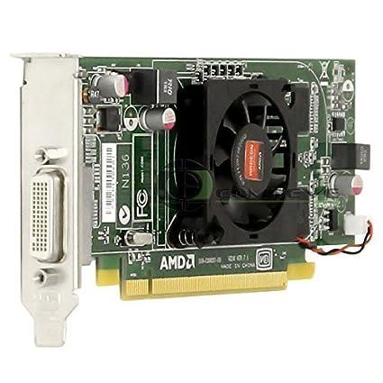 Desconocido AMD/DELL 1CX3M Radeon HD6350 - Tarjeta gráfica ...
