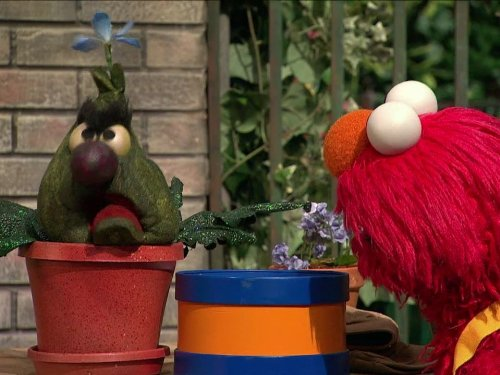 Stinky's Annual Birthday Flower. Episode 4194