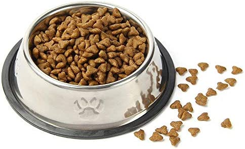 QPEY Pet Food Bowl Stainless Steel Non Skid Pet Paws Doodler Dish is Perfect for a Small Dog Cat Kitten Puppy 2Pc