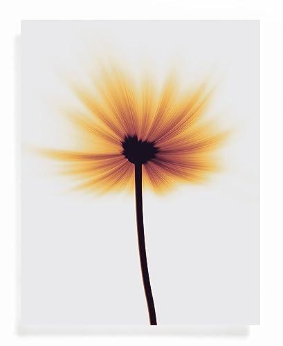 Amazon Flower Song Art Print Amazing Grace Unique Gift