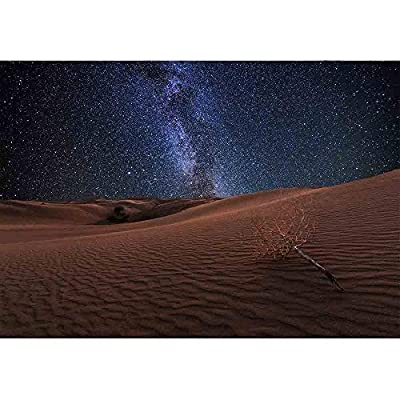 Elegant Craft, Amazing Views of The Gobi Desert Under The Night Starry Sky, Quality Creation