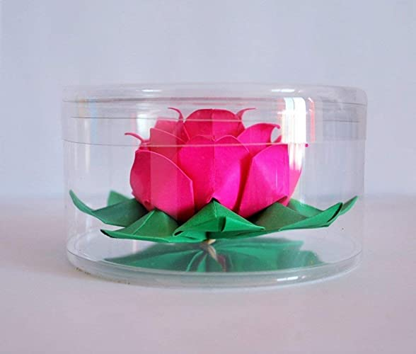 Amazon Origami Lotus Paper Flower Water Lily Handmade