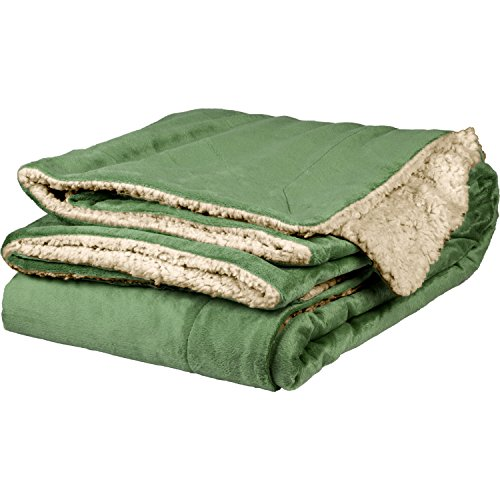 Micro Mink Sherpa Throw (Terry Town DP1709-Sage-1 Micro Mink Sherpa Throw, Sage)