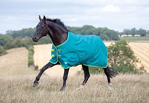 Shires Tempest Original 50g Horse Outdoor Turnout Rug 7'3    87 , Grn Lim