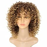 MARIAN Women's Wigs African American Wigs Synthetic Hair Wigs Curly Style Brown Hair