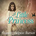 A Little Princess Audiobook by Frances Hodgson Burnett Narrated by Colleen Prendergast