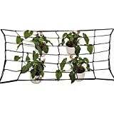 Alapaste Elastic Trellis Netting Flexible Garden Tent Net with Steel Hooks Plants Growth Netting Support Trellis Fits 4x4 and More Size for Vegetables Flowers
