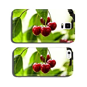 Summer Cherries cell phone cover case Samsung S5