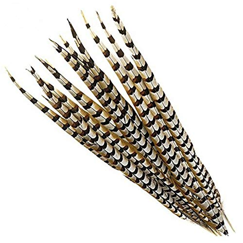 Maslin YY-tesco 12-72inch Natural Pheasant Tail Feathers Wedding Decorations Halloween Reeves Venery Pheasant Feathers Crafts Plumes - (Color: 56-60 inch 140-150CM, Size: 50 PCS) -