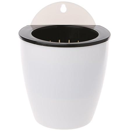 Amazon.com: Sprinz automático absorción de agua PP resina ...