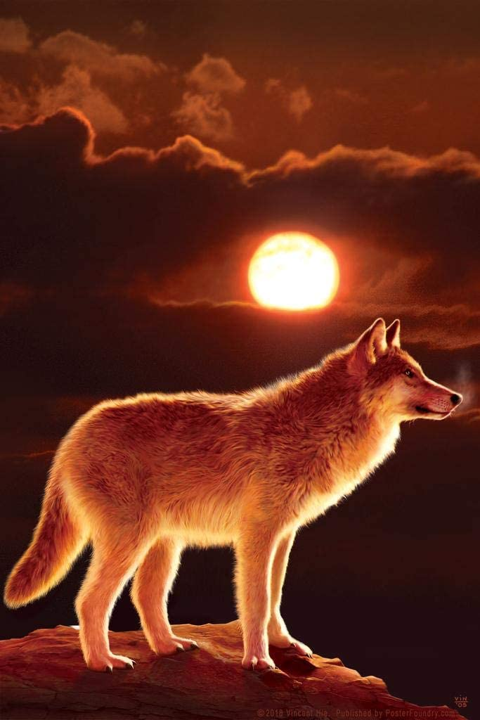 Sunset Wolf on Mountain Ridge by Vincent HIE Spiritual Nature Cool Wall Decor Art Print Poster 24x36