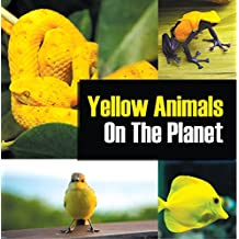 Yellow Animals On The Planet: Animal Encyclopedia for Kids (Colorful Animals on the Planet Book 4)