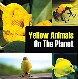 Yellow Animals On The Planet: Animal Encyclopedia for Kids (Colorful Animals on the Planet Book 4) by [Professor, Baby]