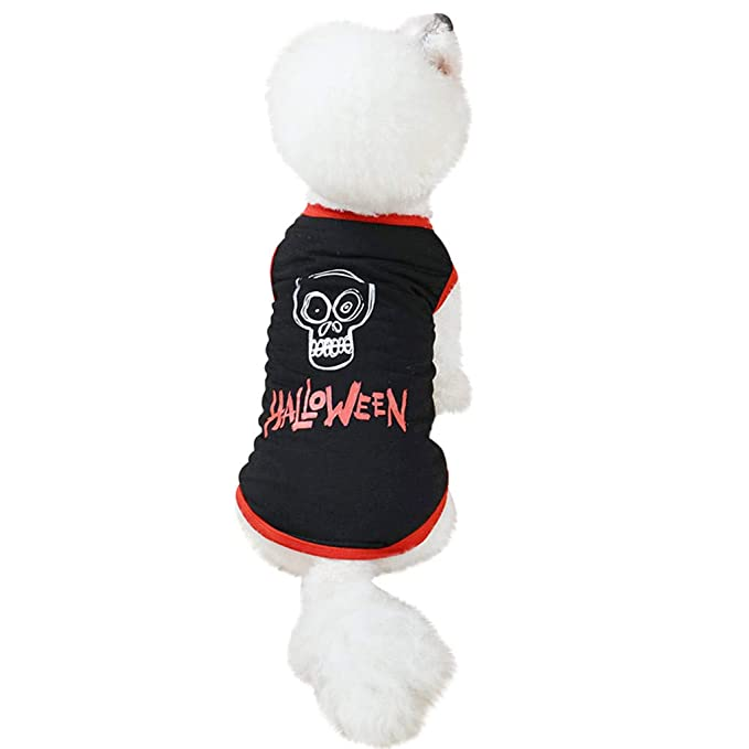 Amazon.com: OOEOO - Camisa para perro de Halloween, chaleco ...