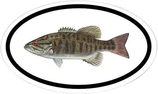Smallmouth bass decal