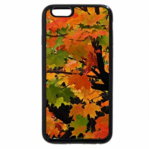 iPhone 6S / iPhone 6 Case (Black) Leaves Of Fall