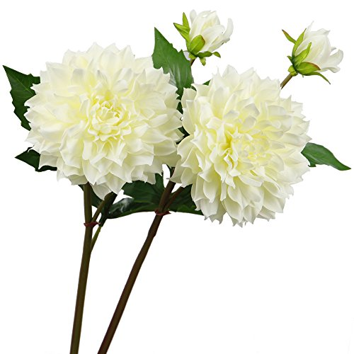 Rinlong Artificial Dahlia Bloom Stems 2pcs Cream Silk Dahlia Flowers with Bud for DIY Crafts Floral Arrangements Wedding Bouquets Indoor Decor