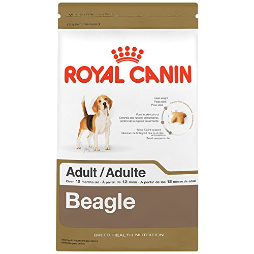 ROYAL CANIN BREED HEALTH NUTRITION Beagle Adult dry dog food, 6-Pound