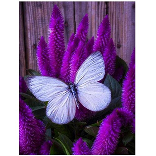 Peacock Butterfly Pictures (DIY 5D Diamond Painting ,Awkingdemi Purple Butterfly DIY 5D Embroidery Painting Cross Stitch Craft Home Decor)