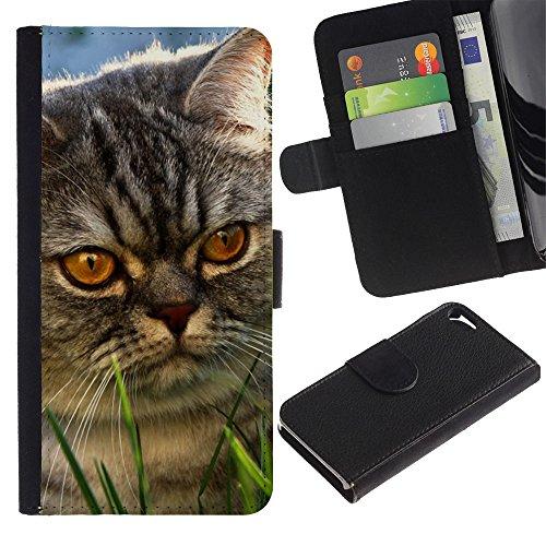 Be Good Phone Accessory // Caso del tirón Billetera de Cuero Titular de la tarjeta Carcasa Funda de Protección para Apple Iphone 5 / 5S // Yellow Eyes Cat Mongrel Grey Angry