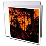 Sandy Mertens Halloween Designs - Grim Reaper Standing in a Scary Orange Lit Forest - Greeting Cards-1 Greeting Card with envelope (gc_156819_5)