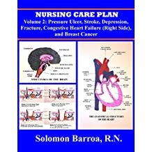 Nursing Care Plan (Pressure Ulcer, Stroke, Depression, Fracture, Congestive Heart Failure (Right Side), and Breast Cancer Book 2)