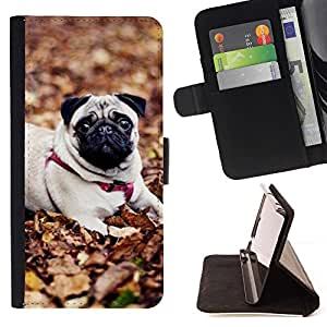 Momo Phone Case / Flip Funda de Cuero Case Cover - Pug perro de mascota Autumn Leaves Naturaleza; - Sony Xperia M2