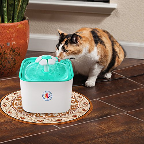 Pet Water Fountain Cat's Dogs Water Dispenser Drinking Fountain 2L Super Quiet Flower Automatic Electric Water Bowl with 2 Replacement Filters for Dogs Cats Birds and Small Animal (BlueMain) by JIALANJIUYU (Image #3)