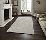 Adgo Chester Shaggy Collection Solid Color High Soft Pile Carpet Thick Plush Fluffy Furry Children Bedroom Living Dining Room Shag Floor Rug (4' x 6', S03 - Cream)