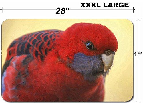 Luxlady Large Table Mat Non-Slip Natural Rubber Desk Pads IMAGE ID: 21075118 A closeup portrait of a crimson rosella parrot ()