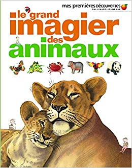 Amazon Fr Le Grand Imagier Des Animaux Delphine Gravier