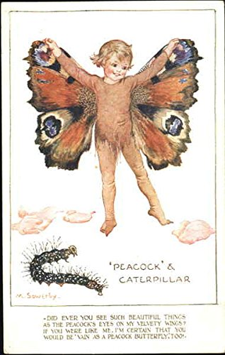 - Peacock & Caterpillar Fantasy Original Vintage Postcard